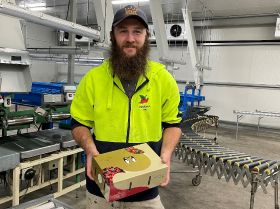 Quality commitment key to Australian cherries in Asia