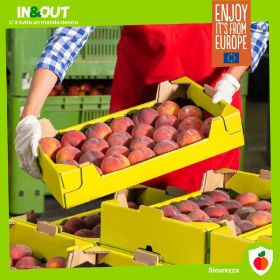 Sustainable, safe, traceable: EU produce takes centre stage