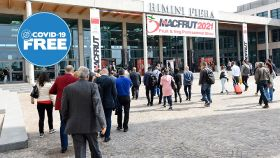 Macfrut: produce industry to gather in person