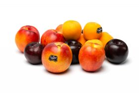 Orsero and Orogel sign stonefruit deal