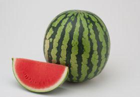 Hazera launches new watermelons