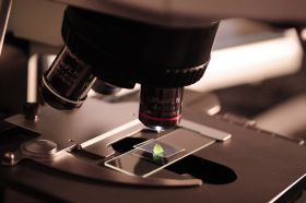 Scientists call for action on gene editing