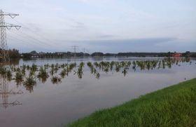 Europe's flood damage begins to emerge