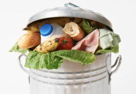 Measuring NZ's food waste