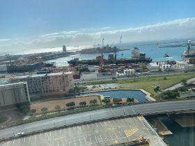 Further port problems hamper RSA exports
