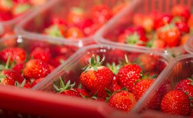 ASF to switch to recycled punnets