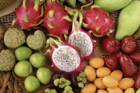 PNC Riverarch acquires Fresh Direct Produce