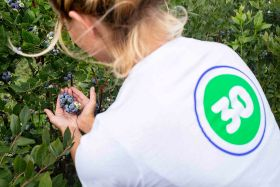 Poland finds berry solutions