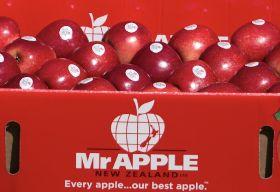 High pricing propels Mr Apple