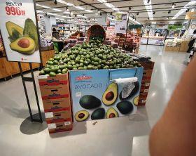 Peru drives surge in Korean avocado imports