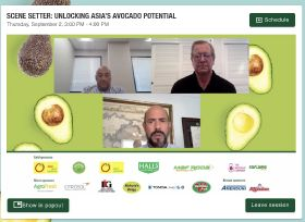Korea displays avocado potential