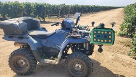 Oppy's grape category techs up in California