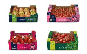 New look for BelOrta tomatoes