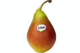 QTee joins BelOrta Earth range