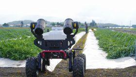 XAG robot helps Japanese growers