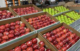 AEC branches into apples and pears