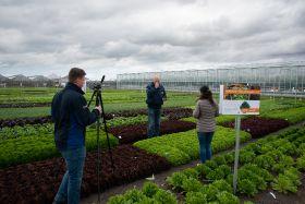 BASF shares innovations at Salad Demo Days