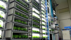 Spread lands vertical farming prize