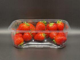 Waddington Europe launches new soft-fruit punnet