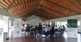 CorpoHass plan galvanises avocado sector