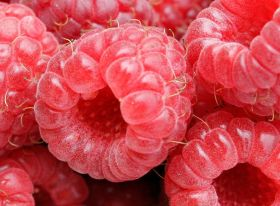 Mexico on brink of berry exports to China