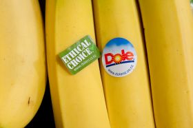 Debt reduction to free Dole's hands