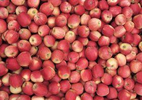UK topfruit volumes to fall below target