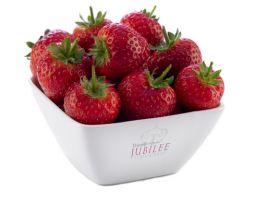 Berry Gardens turnover exceeds £300m milestone