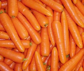 New study reaffirms carrots' eyesight aid link