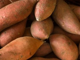 Sweet potatoes 'in short supply'
