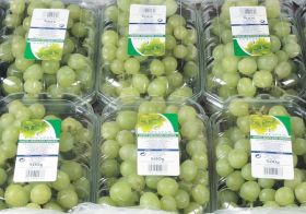 Mandatory registration for India-EU grapes