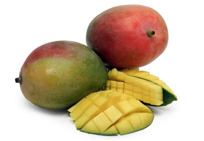 Mango uk