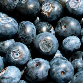 Blueberry boost for recovering athletes