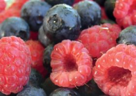 Berries ZA joins Fruit South Africa