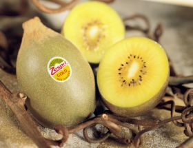 Not guilty plea for Zespri smuggling charges
