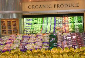 Korea offers organic opportunities