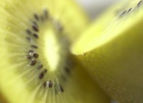 Kiwifruit Claim enters court