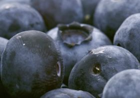 Chilean blues to retain growth