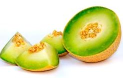Starting gun fired on Murcian melon campaign