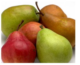 Chilean pear output to remain stable