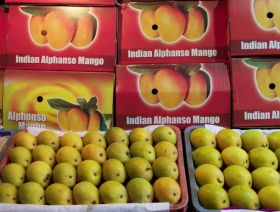 NZ mango imports could rise