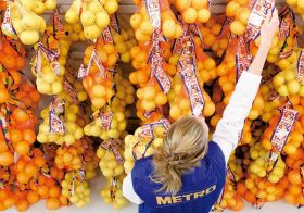 Metro Cash &amp; Carry to cut jobs