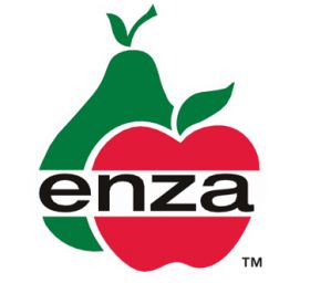 Enza apples arrive in Antwerp