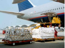 Airfreight sees robust growth
