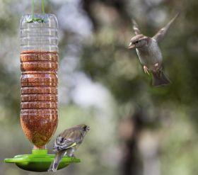 NI's biodiversity boost