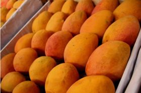 Peru targets Korean consumers with mangoes