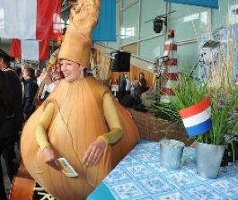 Indonesia reopens to Dutch onions