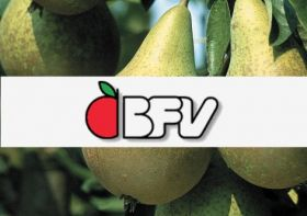 China poised to import Belgian pears