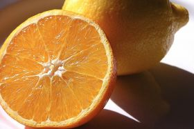 Positive forecast for Mediterranean citrus