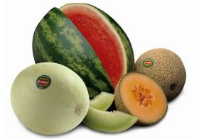 Del Monte denies CR melon claim